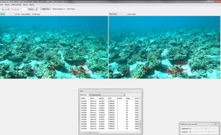 Comparing Fish Surveying Methods in MPAs of Western Australia